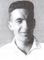 Mikheil Berdzenishvili